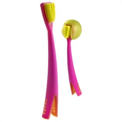 Brosse à dent avec socle BEABA