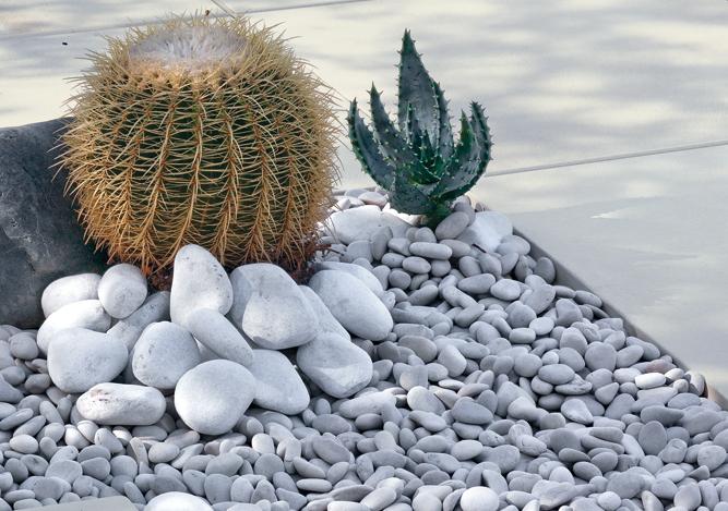 Galets de d coration buy galets de d coration price for Idees de jardin avec des galets