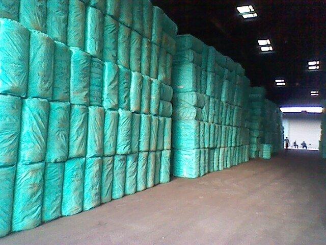 Acheter Cotton