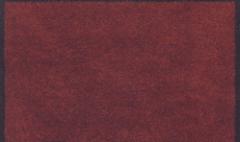 Tapis d'accueil 50x120