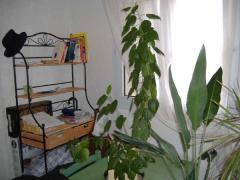 Ref.7853 appartement t2