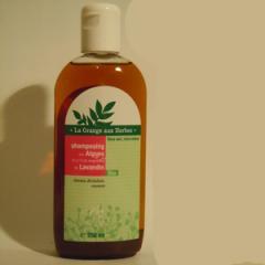 Shampoing bio aux algues