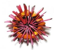 Broche Sol Fuschia Orange a-typik