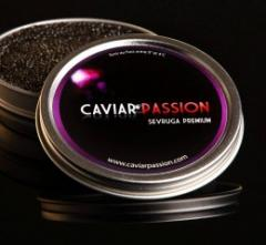 Caviar sevruga premium
