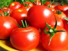 Tomates (besoin)