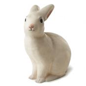 Veilleuse Rabbit