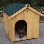 Niche à chien en bois avec toit deux pentes bitumé