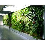 Tableaux vivants avec des murs végétals