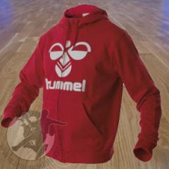 Sweat Hummel hoodie zip classic bee RGE 3074 RGE