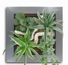 Tableau végétal Etincelle