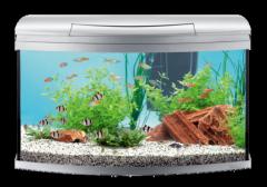 Aquarium prêt à l'emploi Tetra AquaArt® Evolution Line 100 L