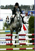 Responsabilite civile proprietaire de chevaux