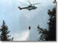Lutte contre les incendies de forêt.