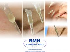 Global trainig for Mesotherapy Acupuncture Mesopuncture_MAM